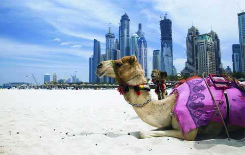 Dubai: So much more than sunshine and skyscrapers